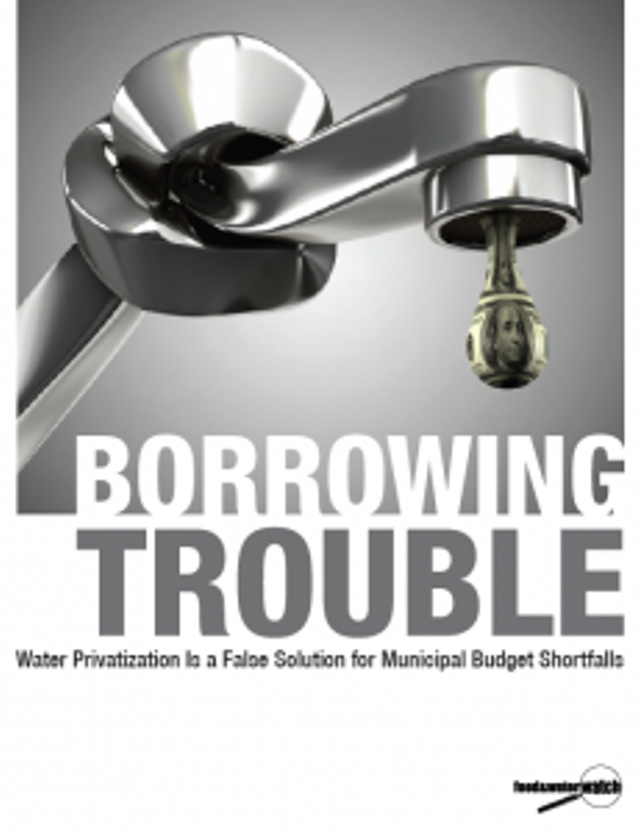 Borrowing TroubleCover-231x300