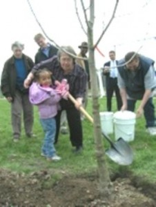 Sheila Crowell and community group planting tree on Dingeman Playfield several years ago. Their community plan for the playground was destroyed by bureacrats; they lost over $508,000 in funding.