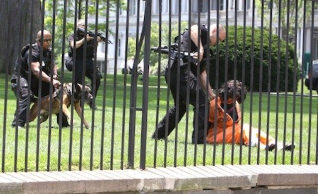 Protester Diane Wilson, who has been on hunger strike in solidarity with Gitmo prisoners, arrested on White House grounds June 26, 2013.
