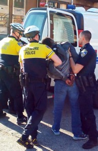 Freddie Gray tossed into police van after arrest.