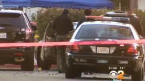 LAPD motorist shooting