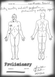 Michael Brown independent autopsy report.