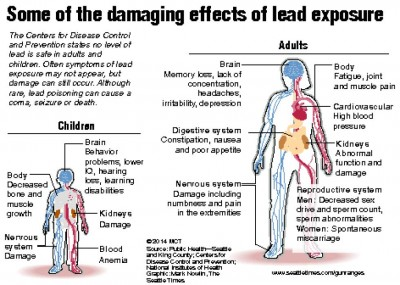 Some of damaging effects of lead exposure