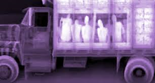 X-ray image of truck carrying passengers.
